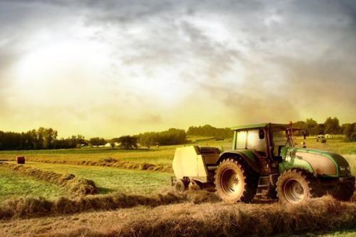 「十万个农场主」:获得天使轮融资,社区支持农业备受资本青睐