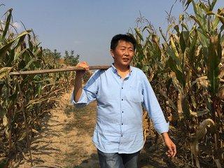案例|淘宝开网店卖农产品,成为马云的朋友,王小帮如何华丽蜕变?