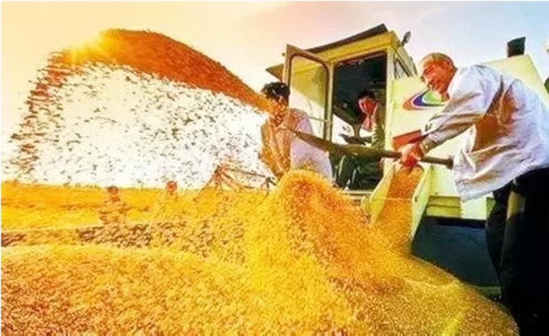 大盘点:中国农业十九大惠农政策!