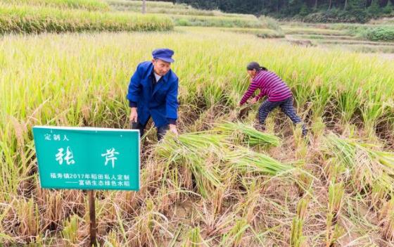 新模式|农村淘宝如何玩订单农业