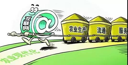 重磅|政策资本双驱动!未来农村电商5大新趋势