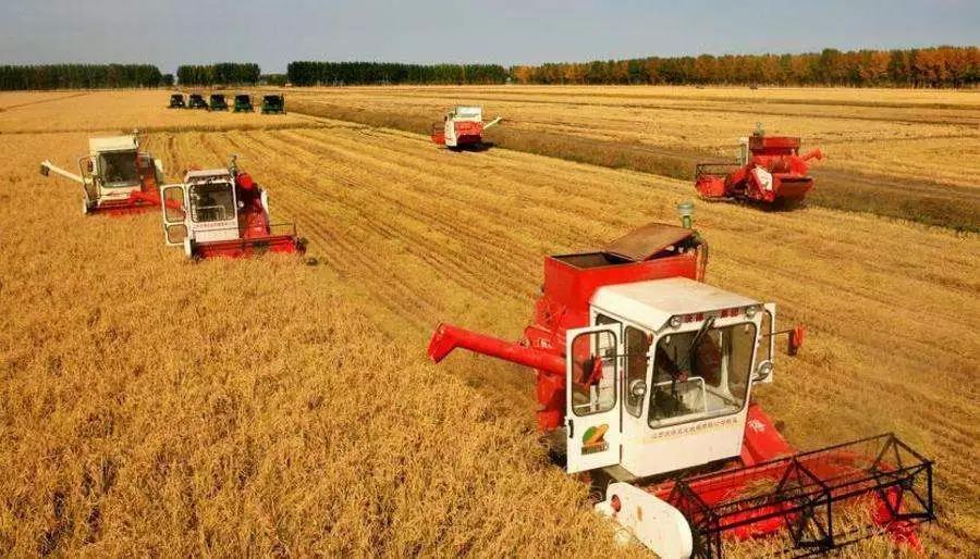 三农日报|中国大豆种植面积或达1.27亿亩;糖料蔗收获机产业获政策支持