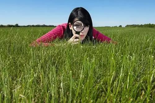 三农日报|福建省级财政支持数字农业建设;电商主体收购贫困户农产品给予奖励