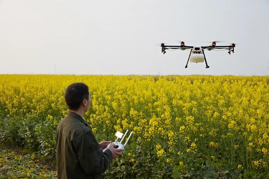 三农日报|地方政府扶持农村电商,最高补贴25万;硝基肥有望改变肥料业格局