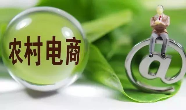 """中国农产品电商""""11个亏损点"""""""