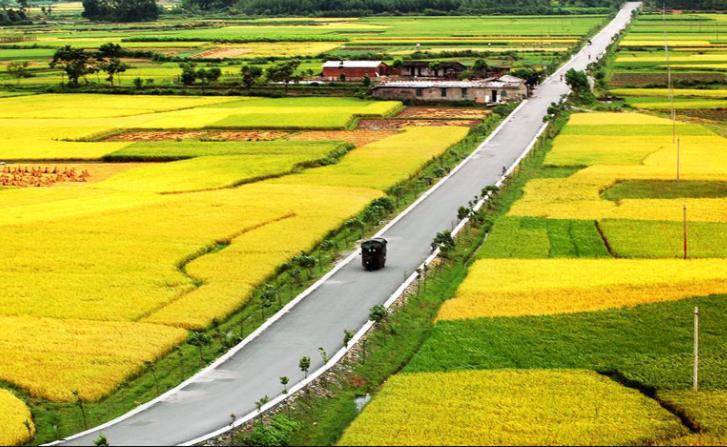 """""""三大优势""""推动农村电子商务跨越发展"""