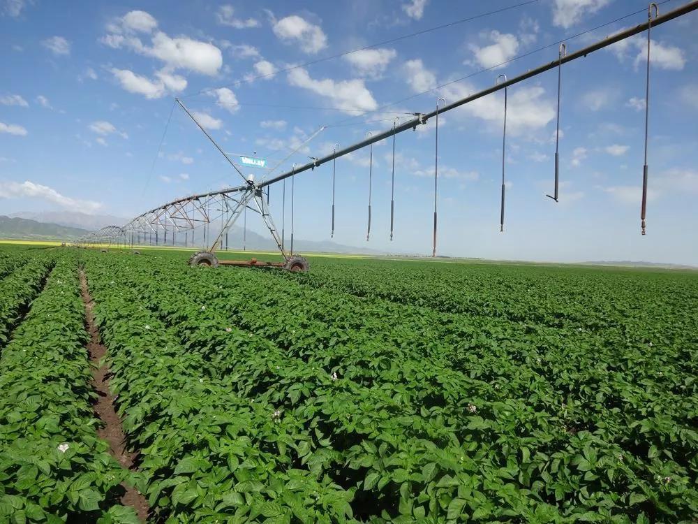 三农日报|电商或成数字乡村新引擎;全球迎来智能农业时代;