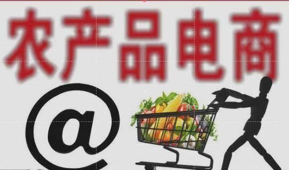 农产品电商:京东、阿里、苏宁、拼多多独霸半壁江山