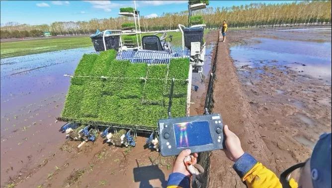 三农日报|直播短视频成为农业新电商代表;2020国家将强力扶持的5类项目