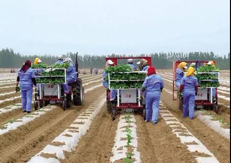 三农日报|农村电商应该大力发展跨境业务;农业与工业发展不平衡问题依然突出