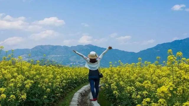 农业产业周报|圣农发展、巴斯夫、煌上煌、北大荒最新动态