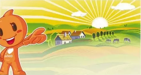 一位农村电商创业者的生意经:先学会生产一颗没鸡粪的鸡蛋