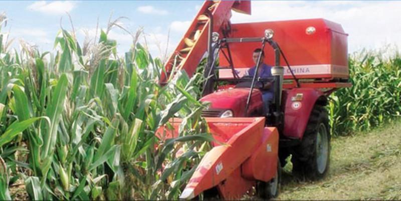 69岁的他用10年研发玉米收割机,想从农机切入为农民提供服务
