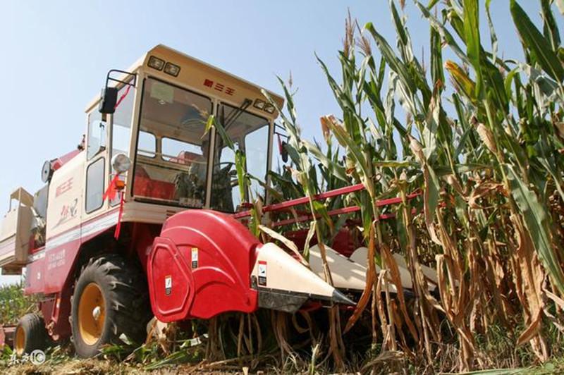 农机购置补贴新政策来了,这两类人做好被清理的准备