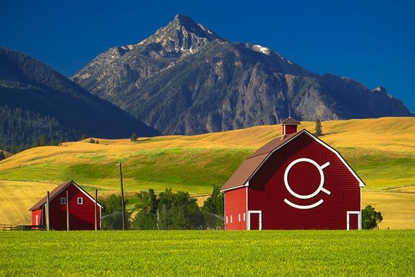 我国有5000年的农业历史 为何不如美国?
