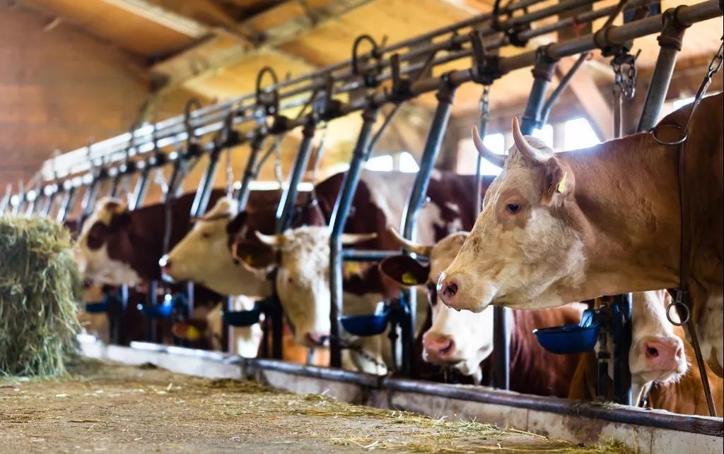 三农日报|报告显示:农业生物技术迎来高速发展;畜禽粪污处理机具将成农机市场新宠