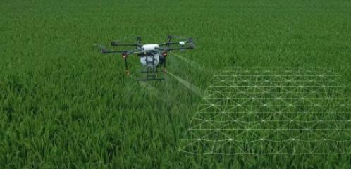 精准抓取农作物生长情绪信息,『麦飞科技』获过亿元A轮融资