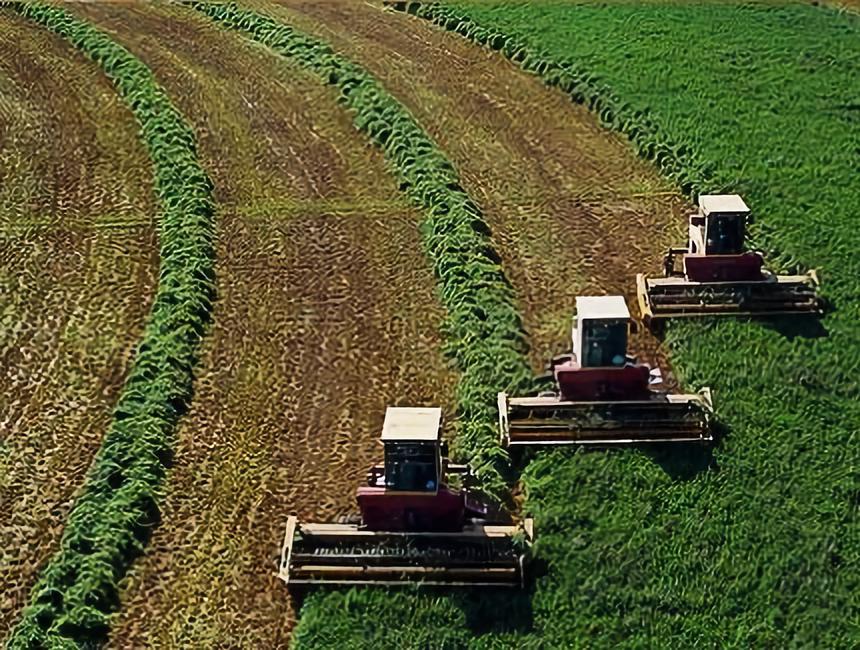 深度观察:打开中国农业生产性服务的迷雾!