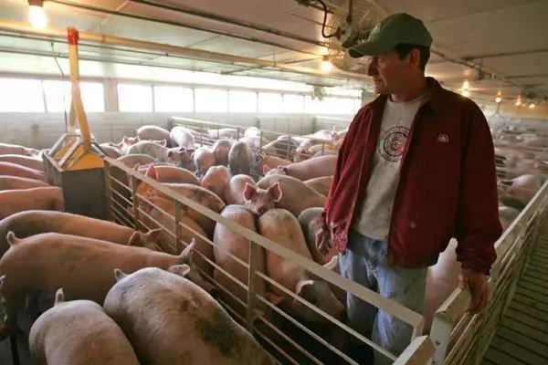 三农日报|美国农业垃圾或将泛滥成灾;业内专家:我国农业产业基本是分散发展