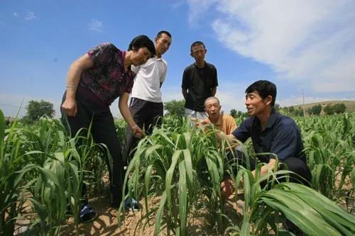 三农日报|我国作物生产机械化发展趋势;数据:生鲜快消增长潜力巨大