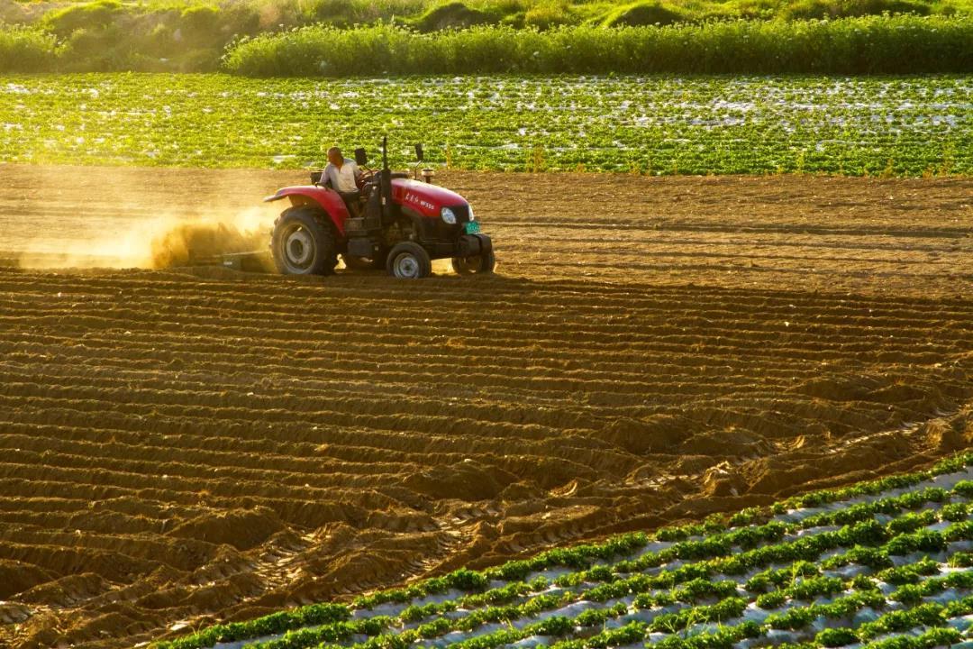 三农日报|外媒:日本机器人农业正高速发展;好想你董事长:我们要玩红枣期货