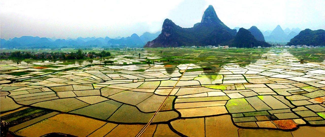 【行业深度】中国农业基本现状和发展趋势