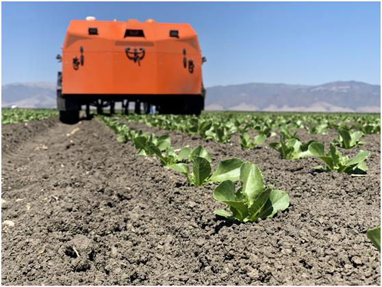 【深度思考】机器人技术是农业的未来吗?