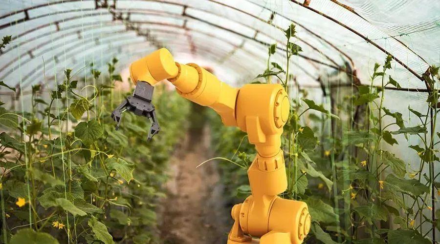 【农业科技】国内外温室园艺机器人的研究和应用现状
