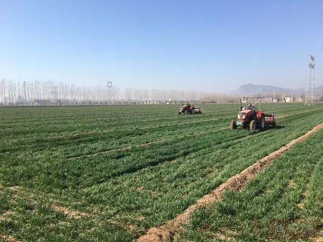 三农日报|政策:支持新型肥料产品研发;券商:农机购置补贴利好龙头企业