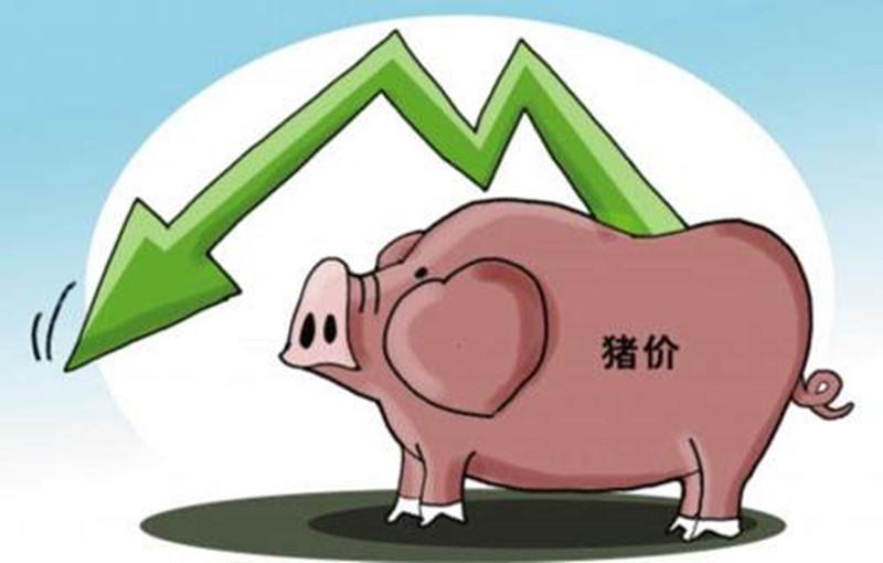 """猪价本应上涨却被强行拉跌,谁是""""幕后祸首""""?"""