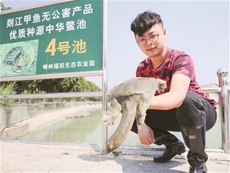 鱼鳖混养 特色产业新模式助农民致富