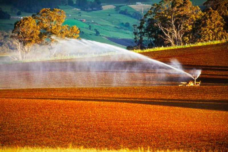 三农日报|2017年底90%全国禁养区将关闭、搬迁;农业不适合赚快钱的投资者