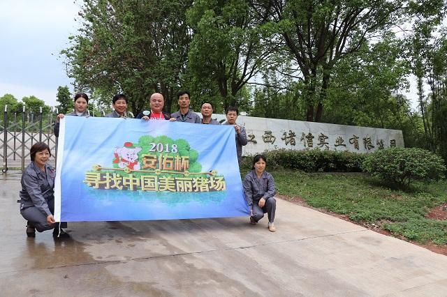 寻找美丽猪场:走猪场第十五站—供港活大猪养殖企业(江西诸信)