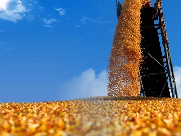 重磅|未来养殖业的趋势与干法(附6个案例)