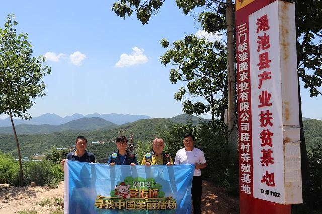 2018寻找中国美丽猪场—走进三门峡雏鹰!
