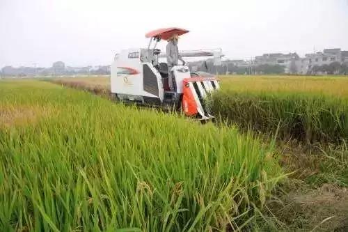 三农日报|互联网农业布局图谱;国土资源部发文力挺养殖业;未来将会有80万农资人被淘汰