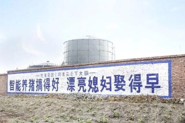 警惕!智能化养殖救不了中国养殖业