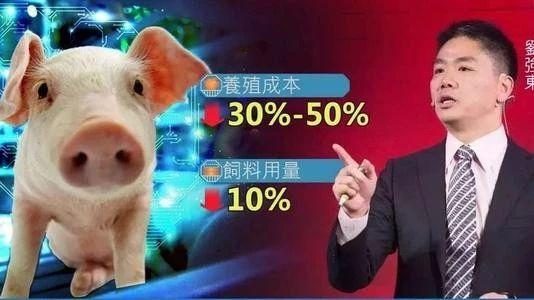 行业硬核|透视京东布局养殖业:未来的竞争不再是同行