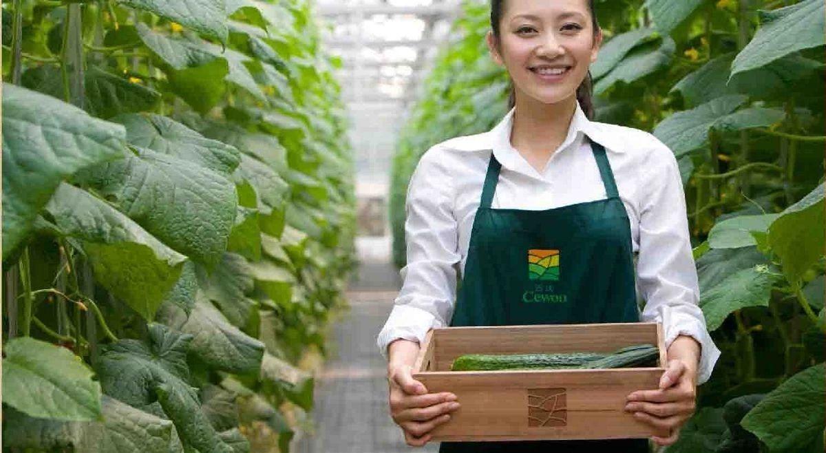 农业产业周报|京东植物工厂、双汇、通威股份、阿里最新消息;本周2家公司成功融资