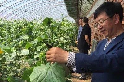 三农日报|国家加大生猪龙头企业扶持;我国96%的农户规模在30亩以下