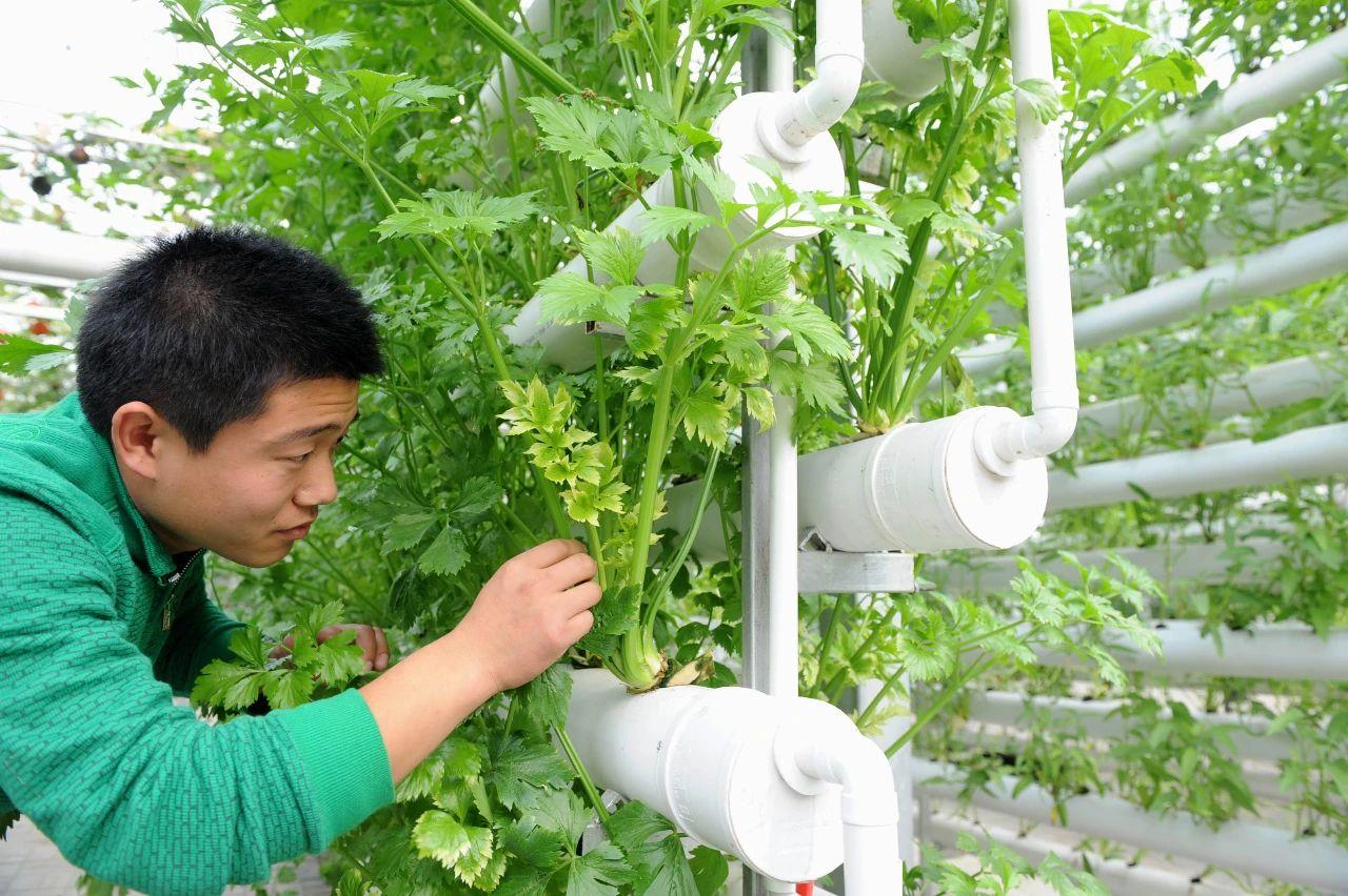 三农日报|国家鼓励土地经营权融资担保;智能农业科技产品迎来爆发