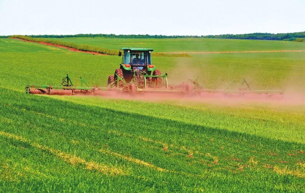 三农日报|政策:加工业迎来发展利好;我国禽肉消费量已超越美国