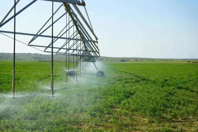 农业产业周报|温氏、一亩田、海大、北大荒、兴盛优选最新消息;本周5例资本事件