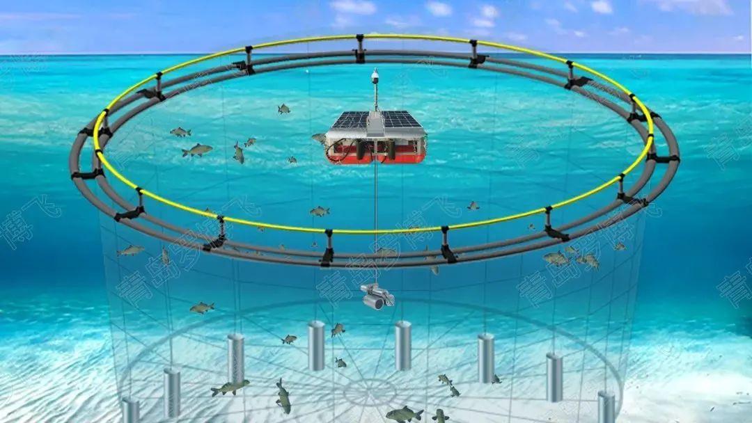 【政策解读】渔业数字化建设怎么干?《数字乡村建设指南1.0》这么说!