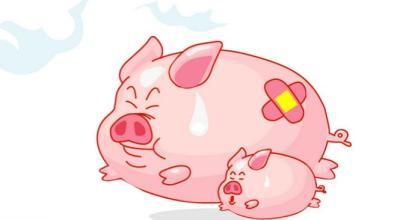 农业部:短期内猪价下跌空间不大,预计三季度将高位震荡