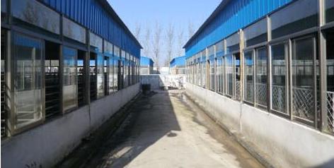 展望 中国养猪行业未来的发展模式!
