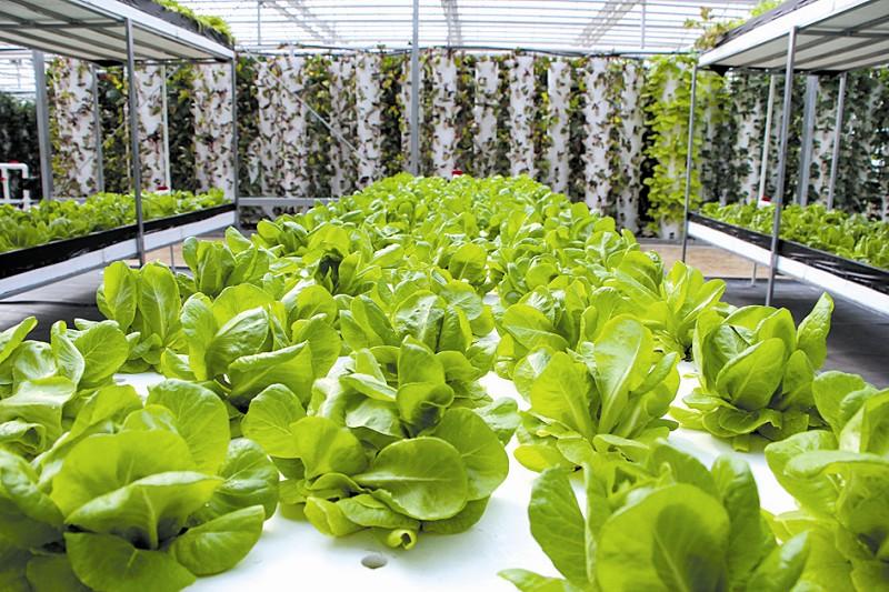 农业7大改革与创新,事关九亿农民