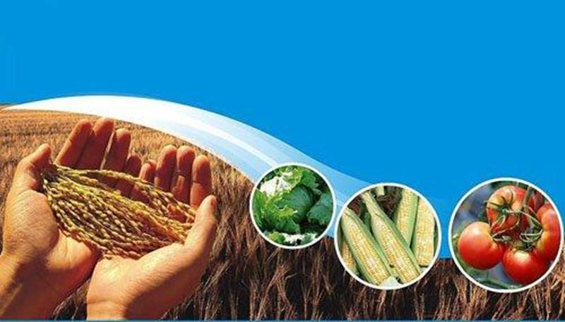 """畜牧业的""""臭""""难题 正在变成种植业的""""香""""产出"""