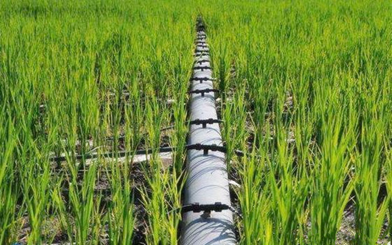 绿色农业发展,节水问题存在这三大痛点