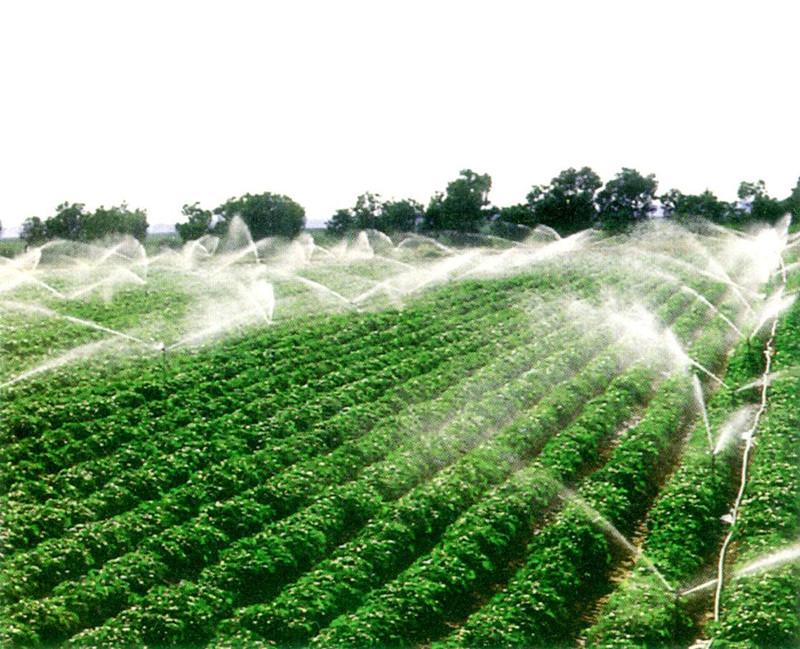未来十年农业的三大发展方向,传统农民或许会下岗!